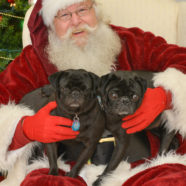 Rudy with Caroline & Dexter and Santa
